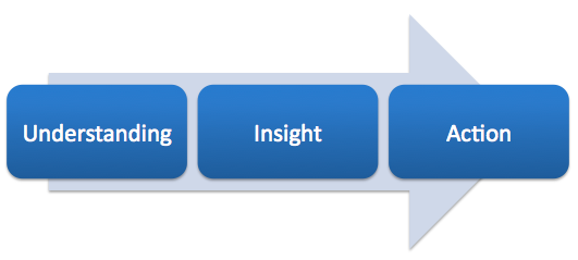 Understanding Insight and Action