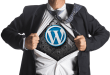 High Performing WordPress Hosting