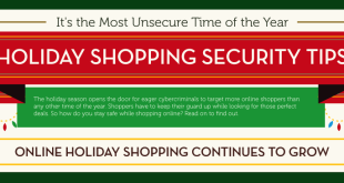 2011 Holiday Shopping Infographic