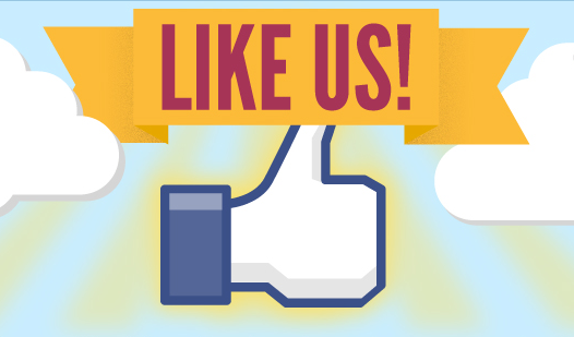 Like Us! A Survey of Users on Brand Engagement
