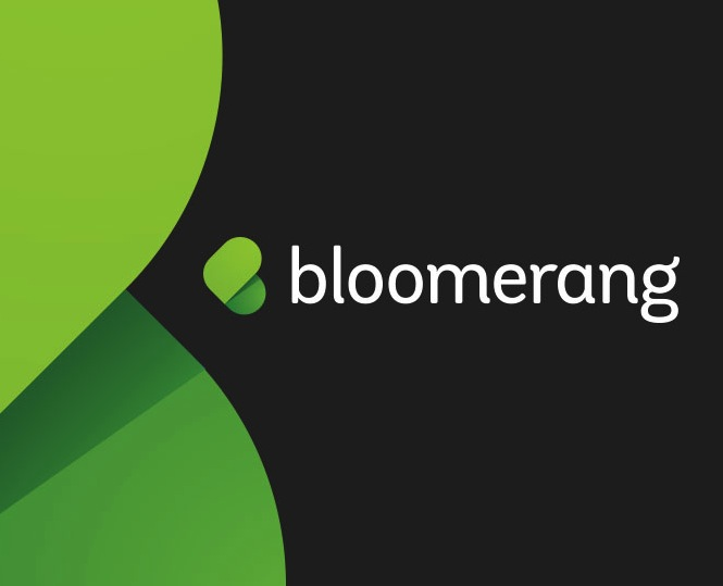 Non-Profits: Cloud-Based Fundraising 3.0 with Bloomerang