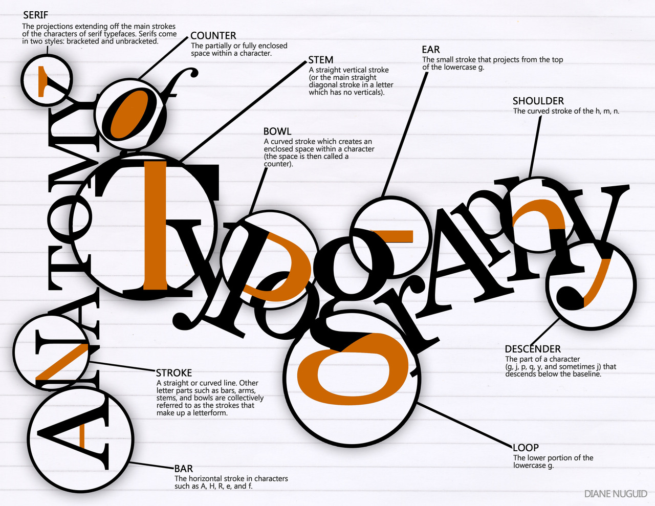 16 Different Elements of Typography