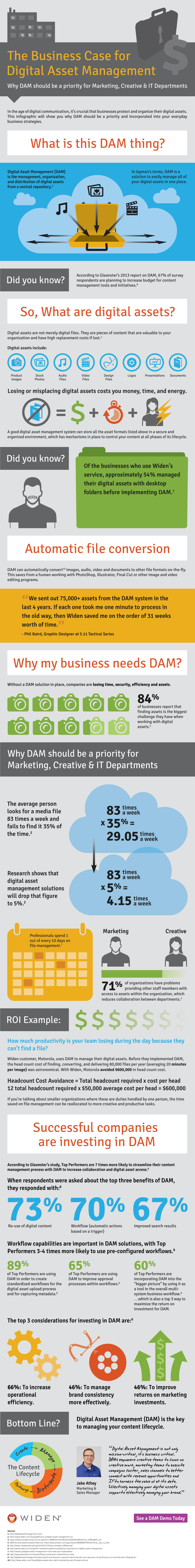 The-Business-Case-for-DAM-Infographic (1)