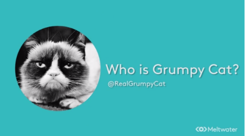 VIDEO: Grumpy Cat, the Fat Jew & the USCTO Link Awareness & Engagement