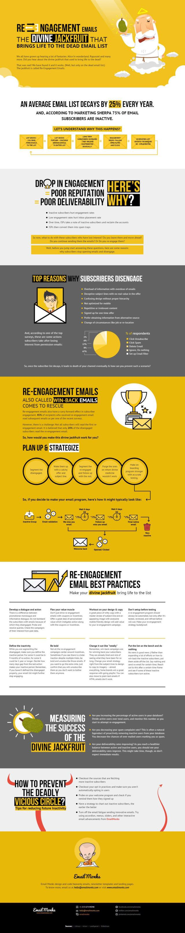 Email Re-Engagement Campaign Infographic