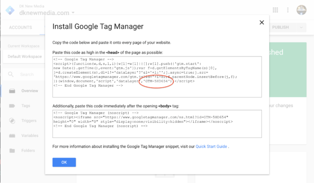 Google Tag Manager Script