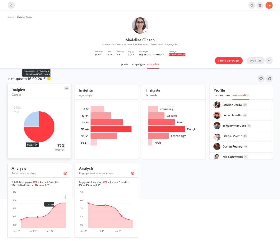 Influencer Campaign Results