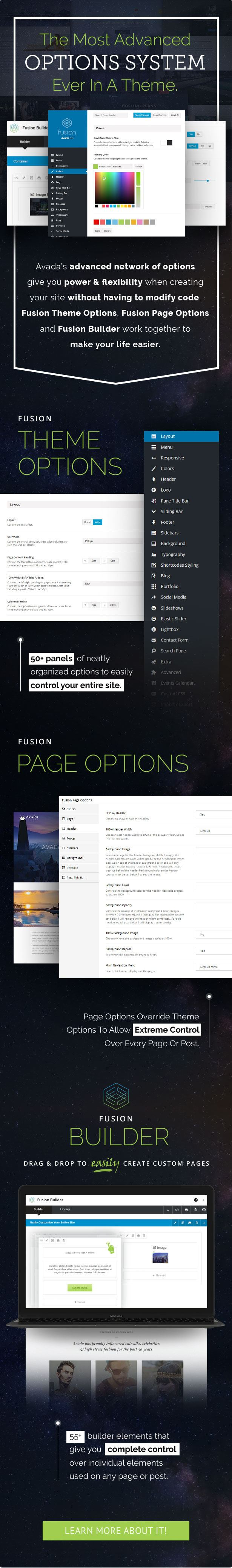Avada WordPress Theme Options